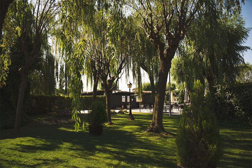 Terrazas en Hotel Conde Rodrigo II